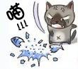 猫愤怒摔鱼图